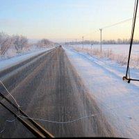 ждут поля большого снега... :: Галина Филоросс