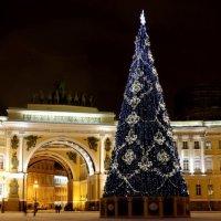 главная елка нашего города... :: navalon M