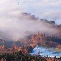про туман :: Elena Wymann