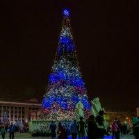 елочка нарядная на площади стоит... :: gribushko грибушко Николай