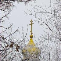 купол маленькой церквушки :: Марина