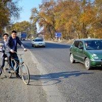 Путь к невесте. На велосипеде. :: santamoroz