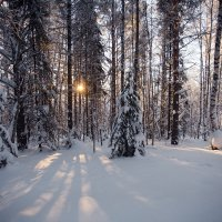 Закат в тайге :: Владимир Кочкин