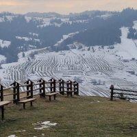 С видом на снег... :: Liliya