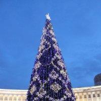 Санкт-Петербург. Елка на Дворцовой площади :: Александр