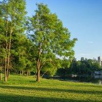 Гатчинский парк :: Olga subbotina