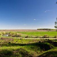 Река Зуша :: Александр Березуцкий (nevant60)
