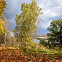 Осень :: Георгий Харитонов