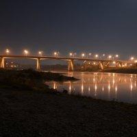 Мосты в г. Алексин :: Георгий Харитонов