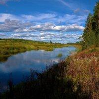 Молога река... :: Sergey Gordoff