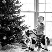 В ожидании Деда Мороза :: Anna Shevtsova
