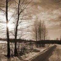 пейзаж зимний :: Анатолий Аверкин