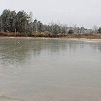 ледяное озеро :: оксана