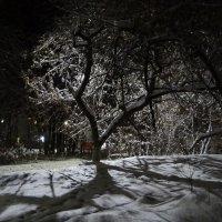 Ночь во дворе :: Юрий Владимирович 34