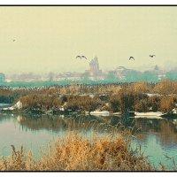 Пейзаж с утками. :: Евгений Кузнецов