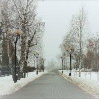 Январский туман :: °•●Елена●•° Аникина♀