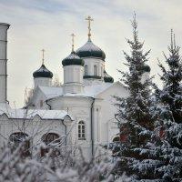 Зима. Кострома. :: Марина