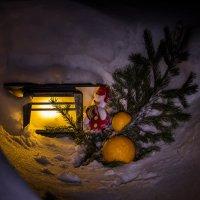 Новогодний сюжет :: Anatoliy Pavlov