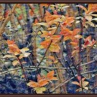 Три варианта одной картины - в стиле импрессионизма :: Владимир Бровко