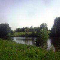 Лето в Михайловском районе :: Tarka