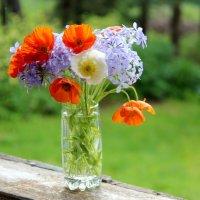 Весна :: Екатерина Алешкина