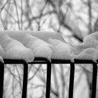 Снег :: Евгений Лебедь