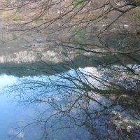 Зеркало Голубого озера. :: Вячеслав Медведев