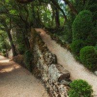 Прогулка до бельведера Дордони, расположенного в 800 метрах от замка :: Надежда Лаптева