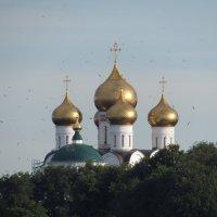 Купола и чайки :: Дмитрий