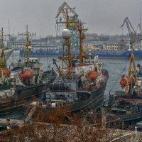 Три богатыря :: Игорь Кузьмин
