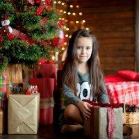 пора открывать подарки... :: Вероника Крайникова