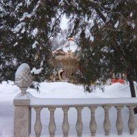 Французская карусель зимой :: Наталья Тимошенко