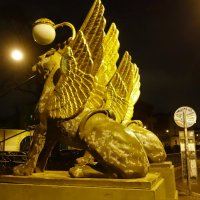 Золотые крылья... :: Sergey Gordoff