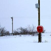 Красный телефон. :: Валерия  Полещикова