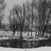Пейзаж на реке.... :: Анна Шишалова