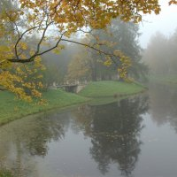 Утро в парке :: Наталья