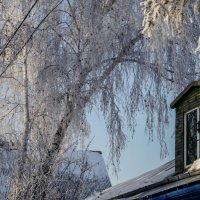 Зима :: Наталья ***