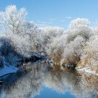 Река Кума зимой. :: igor