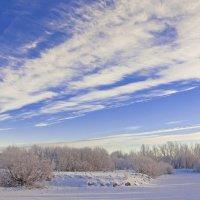 Зимний пейзаж :: Ольга Осовская