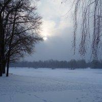 И к нам пришла зима... :: Galina Dzubina