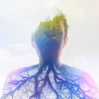 roots :: kostya Nero