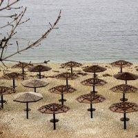 Зимний пляж :: Нина Бутко