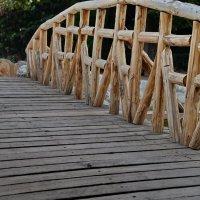 Мостик через пруд, Национальный парк в Афинах :: Владимир Брагилевский