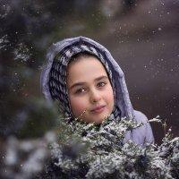 Зима :: Евгения Гапонова