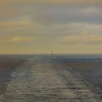 Там далеко.. :: Raman Stepanov