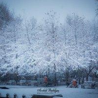 Зима :: Arshak Badalyan