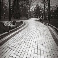 Дорожки Маріїнського парку. :: Андрий Майковский
