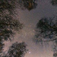 Очи небесные ... :: Ramunas Einoris
