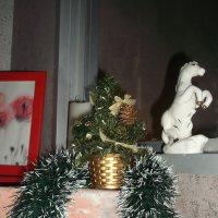 Новогоднее украшение :: Svetlana Lyaxovich