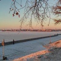 начало зимы :: Елена Байдакова